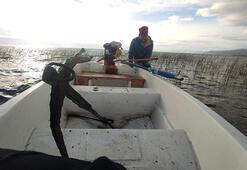 İznik Gölünde su çekildi, tarihi eser olduğu sanılan çapaya rastlanıldı