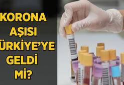 Son Dakika: Korona aşısı geldi mi, aşı zorunlu mu olacak Korona aşısı yaptıran virüs bulaştırır mı