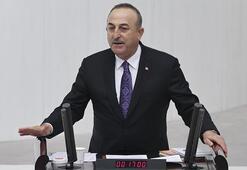 Son dakika Bakan Çavuşoğlundan skandal karar sonrası açıklama: Elimizin tersiyle ittik
