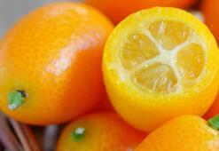 Altın portakal diyorlar Kamkatı kabuğuyla yiyin çünkü...