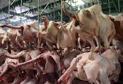 Hindi eti talebi iç piyasada arttı, ihracatını Kovid-19 yavaşlattı