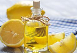 Araştırmalar kanıtladı Okaliptus, ıtır ve limon yağları koronavirüsle savaşıyor
