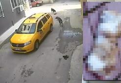 Taksinin köpeği ezdiği anlar, güvenlik kamerasına yansıdı