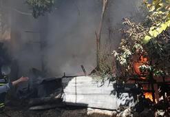 Son dakika... Adanada evde çıkan yangın, çevredeki binalara da sıçradı