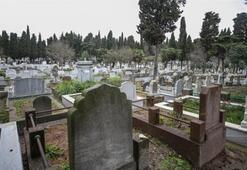 İstanbulda mezar karaborsası Mezar fiyatları 2 milyon lirayı buluyor