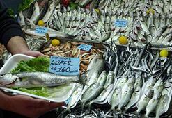 Denizlerin prensi lüferin kilosu 100 liraya düştü