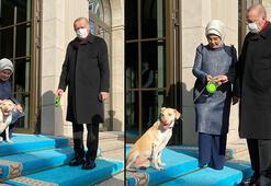 Emine Erdoğan, Leblebi ile Cumhurbaşkanı Erdoğanı uğurladı