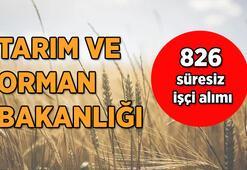 Tarım ve Orman Bakanlığı 826 süresiz işçi alımı başvuru şartları neler İŞKUR üzerinden başvurular nasıl yapılacak