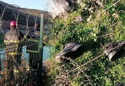 Kocaelide, gölete giren 9 yaşındaki Hüseyin boğuldu