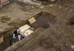 ABDde korkutan rakamlar Tabut yapımı için tahta bulmak zorlaştı