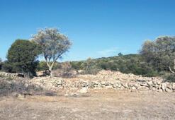 Yarımada'da Afrodit tapınağı bulundu