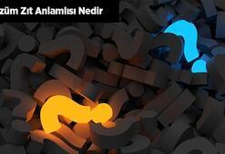 Çözüm Zıt Anlamlısı Nedir Çözümün Zıt Anlamı Olan Kelimeler