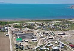 Vali Bilmez: 2021de Van Gölü kirlenmekten kurtulacak