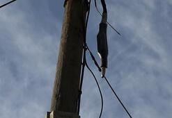 İnternet kabloları yine çalınan mahalleli isyan etti
