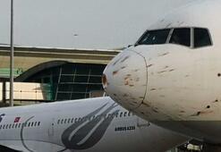 Kuş sürüsüne giren kargo uçağı Atatürk Havalimanına iniş yaptı