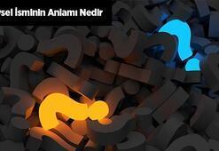 Veysel İsminin Anlamı Nedir Veysel Ne Demek, Hangi Anlama Gelir