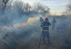 Gürcistanda 24 saatte 234 noktada orman yangını çıktı