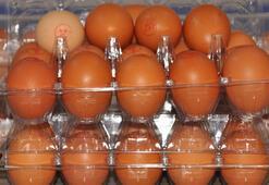 Pandemide yumurtaya talep yüzde 100 arttı