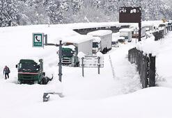 Japonya'da yoğun kar yağışı nedeniyle ölü sayısı 29a çıktı