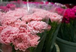 Çiçek sektöründen 83 ülkeye 107 milyon dolarlık ihracat