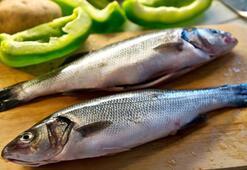 Balık zehirlenmesi belirtileri nelerdir, ne zaman ortaya çıkar