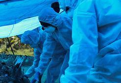 Son dakika: Koronavirüs bitmeden yeni salgın Alarm verildi...
