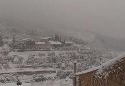 İspanyada kar fırtınası: 600 yol ulaşıma kapandı
