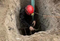 6 metrelik çukura düşen eşek kurtarıldı