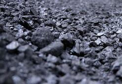 Muhtaç ailelere kömür yardımı bu yıl da devam edecek