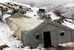 Ankarada etkili olan kar yağışı sonrası ahırın tavanı çöktü
