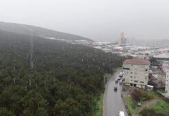 Son dakika... İstanbulda kar yağışı başladı İşte ilk görüntüler...