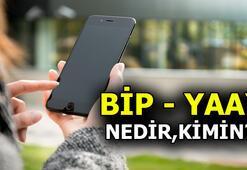 BiP ve Yaay kimin BiP ve Yaay uygulaması nedir, güvenli mi Mesajlaşmak ücretli mi, ücretsiz mi