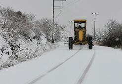 Aydının yüksek kesimlerine kar yağdı