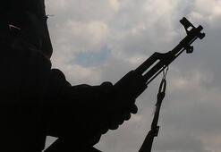 PKKya desteği teröristlerin sözde yöneticilere gönderdiği raporlara yansıdı