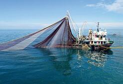 Hamsi avı yasağı 28 Ocak'a uzatıldı