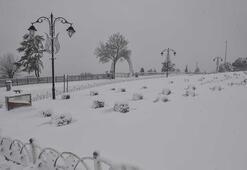 Kar yağışı yurdu etkisi altına aldı