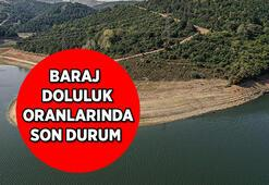 Yağışlar baraj doluluk oranlarını ne kadar etkiledi İşte İstanbuldaki barajlarda son durum...