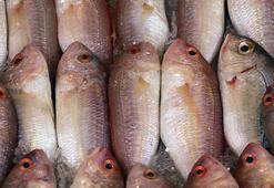 Balıkta büyük hile Karbonat ve tuzun içinde bekletiyorlar...