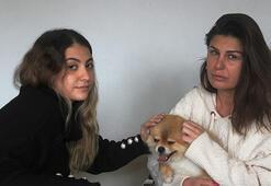 Köpeğin saldırısına uğrayan genç kızın annesi, köpeği ezmekle suçlandı