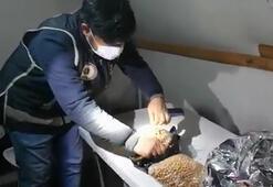 Nohut ve çay paketlerinden 58 tane kaçak cep telefonu çıktı