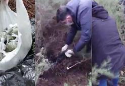 Ormanlık alanda saklanan uyuşturucular böyle bulundu