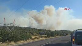 İzmir'de orman yangını! Havadan karadan müdahale ediliyor