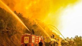 Manavgat'taki orman yangınıyla ilgili 1 kişi tutuklandı