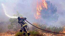 Prof. Dr. Doğanay Tolunay orman yangınların sebebini açıkladı: Yıldırım değilse mutlaka insandır