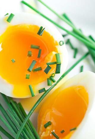 Canan Karataydan yumurta diyeti