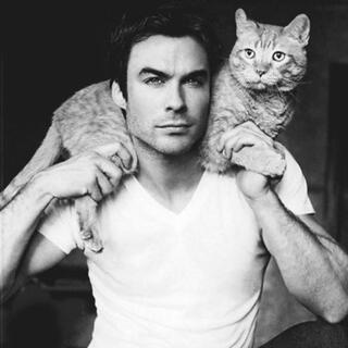 En seksi kedi sahibi erkekler