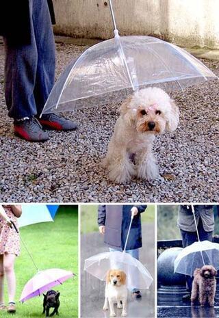 Tuhaf ama inanılmaz icatlar