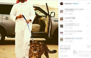 Zengin Arapların inanılmaz tutkusu