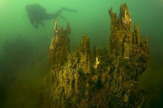 Van Gölünde dalış turları