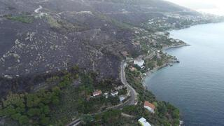 Marmara Adasındaki orman yangınında 80 hektar kül oldu